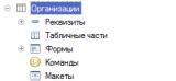 RLS. Шаблон ограничений доступа по организациям. 2. Объект для ограничений.png