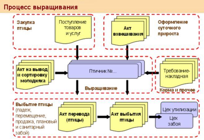 1с автоматизация птицефабрики автоматизация в 1с предприятие 8