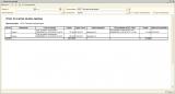 Формирование отчета в разрезе организации и контрагента