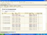 Отчет за текущий месяц с переходящими командировками (выделены цветом)