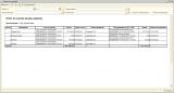 Формирование отчета без параметров