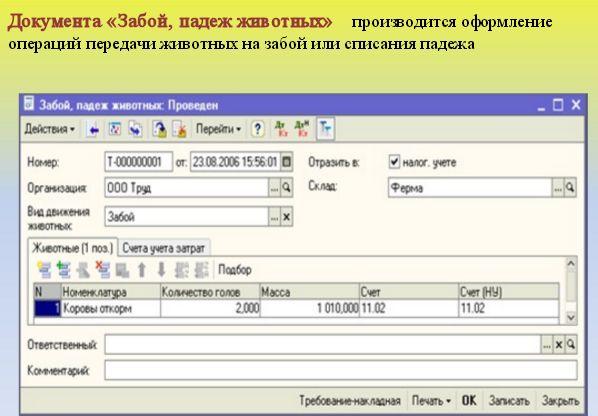 Модуль no11 для 1с автоматизация сервисного центра скачать как в 1с комплексная автоматизация поменять главного бухгалтера