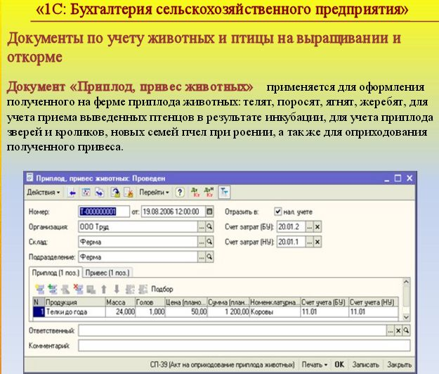 Модуль no11 для 1с автоматизация сервисного центра скачать 1с базовая проблема при обновлении