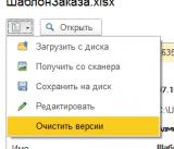 ОчиститьВерсииФайла.png